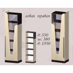 Витрина Арья 550